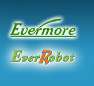 Evermore Tools